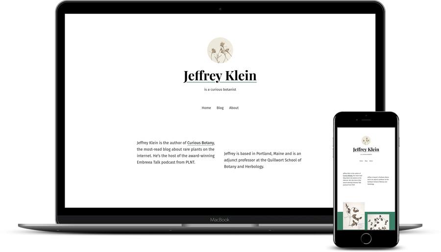 luchshie-wordpress-temy-dlya-sajta-fotografa-seedlet